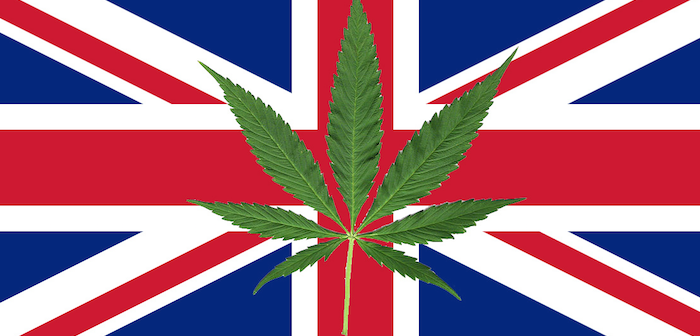 british_intelligence_uk_cops_told_to_stand_down_on_marijuana_cultivation-700x336