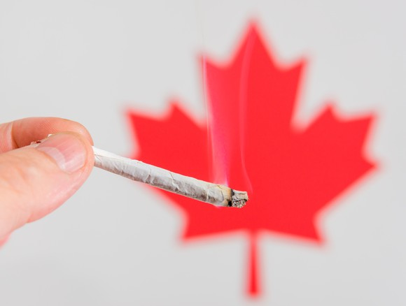 A person holding a cannabis joint in front of the red Canadian maple leaf.