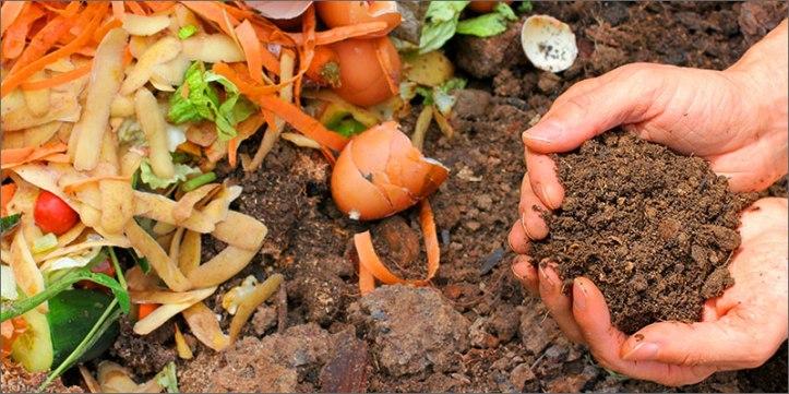 compost The Definitive Guide To Growing Organic Marijuana