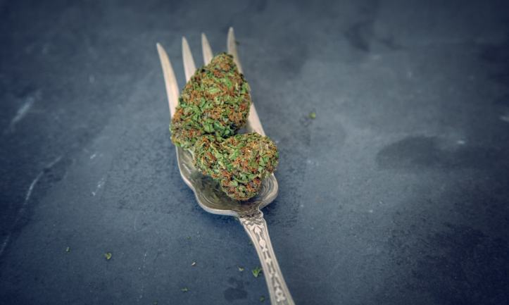 Can You Get High From Eating Raw Weed?
