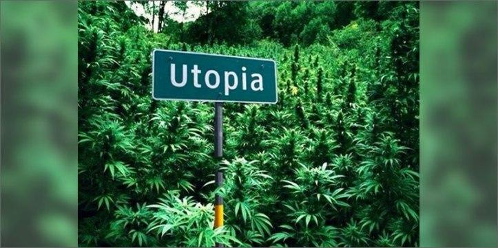 utopia The Definitive Guide To Growing Organic Marijuana