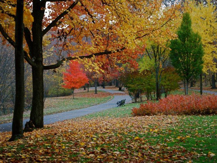 November, Brookline