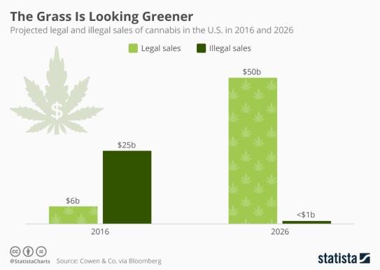 marijuana sales cannabis stats