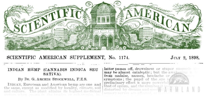 1898-scientific-american-cannabis-indica-stockwell-1200x565
